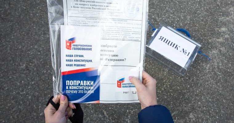 голосование конституция поддержали
