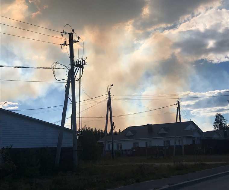 В ХМАО горят леса в черте города. ФОТО