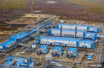 Беспорядки завод свободный амурская область