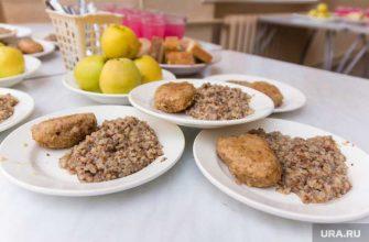 Школьников Ямальского района будут кормить бесплатно