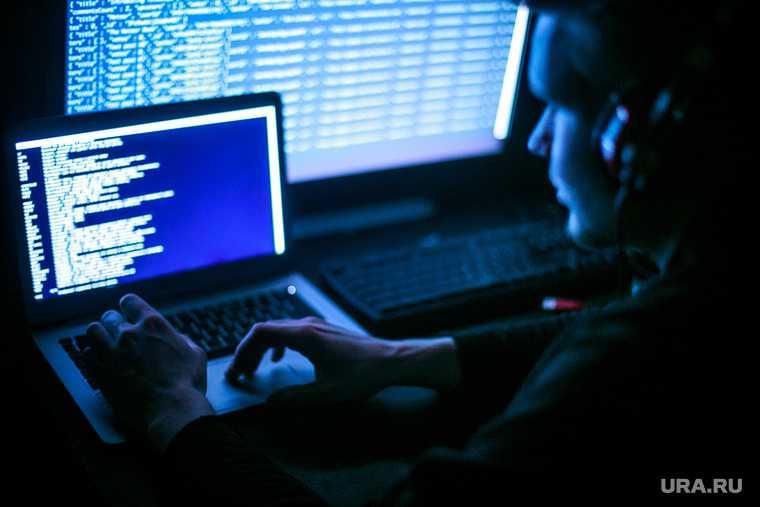 Для подготовки доклада Путину СПЧ привлечет хакеров