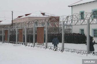 бизнесмен Виктор Палий преступление наказание помилование