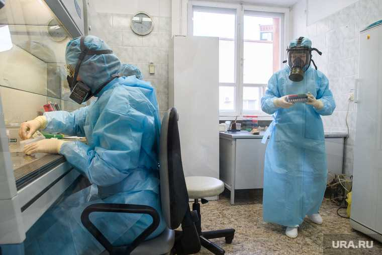 коронавирус мутация опасность мутирует Россия