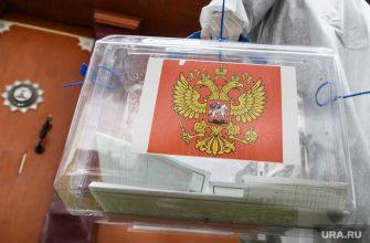 выборы губернатор