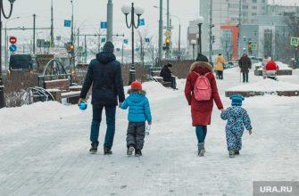 изъятие детей за сутки защита