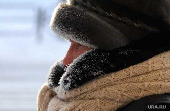 Погода в Курганской области