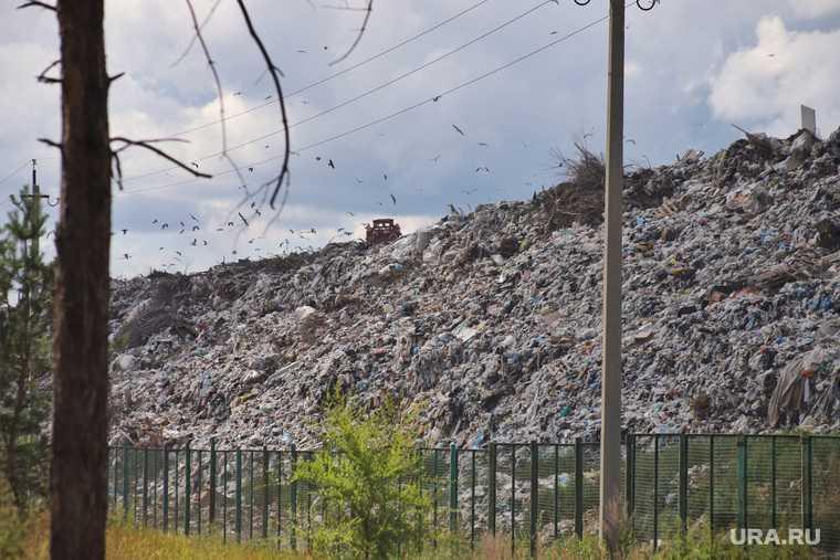 территориальная схема размещения отходов Курганская область