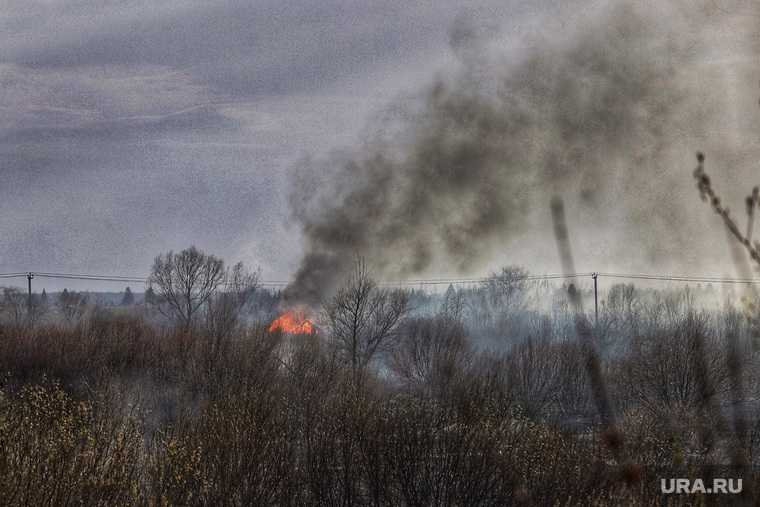 пожар Курганская область