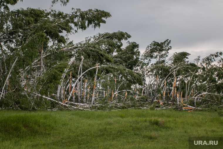 ураган в Тюменской области шторм