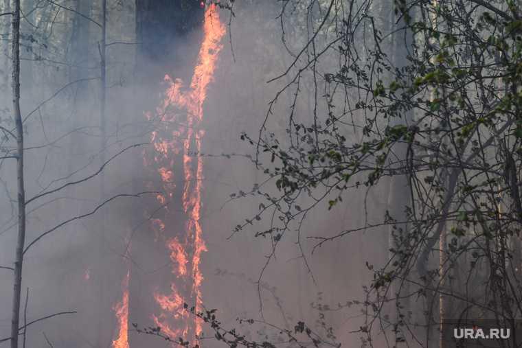 в Абатском районе чуть не сгорела АЗС
