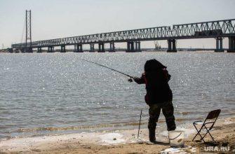 Жителя Челябинска ударило током во время рыбалки