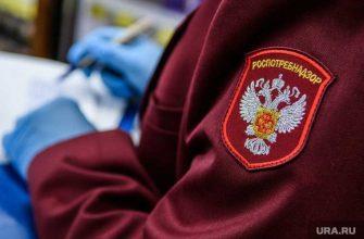 Власти Татарстана проводят проверку после концерта Niletto